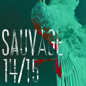 Sauvage (expositions 2014-2015)